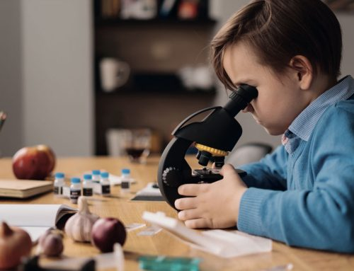 The Importance of Natural Sciences in Children's Education